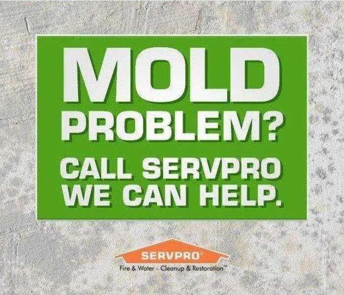 Need Commercial Mold Remediation?