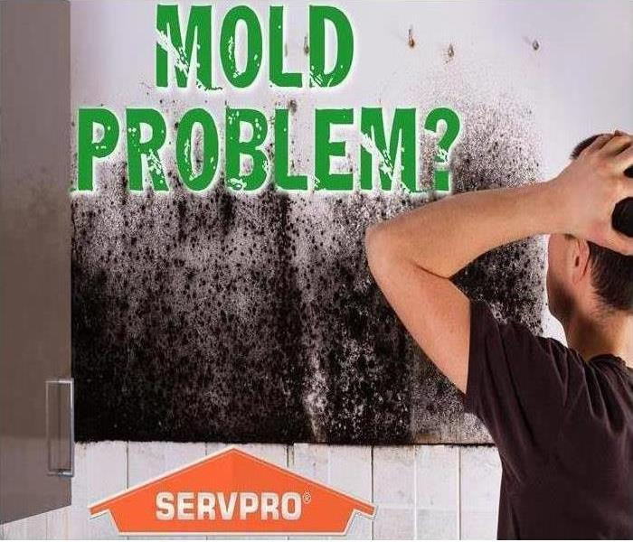 Mold Remediation is easy with SERVPRO