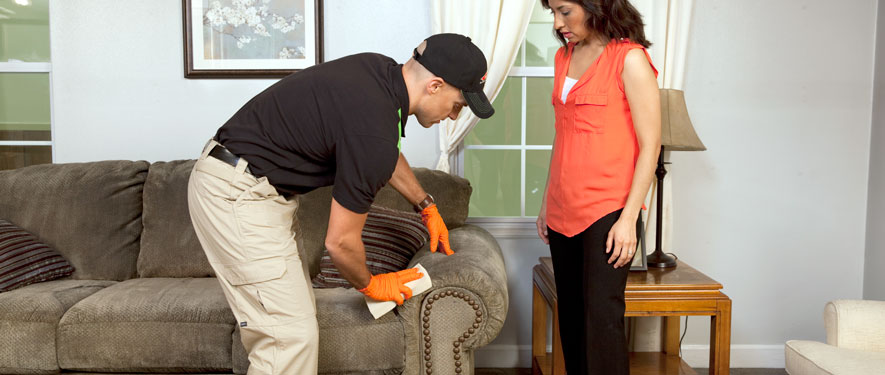 West Springfield, VA carpet upholstery cleaning
