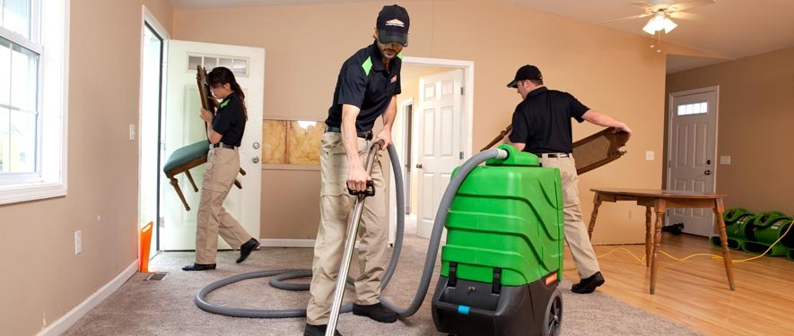 West Springfield, VA cleaning services
